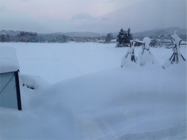2016.1.25大寒波で雪HPブログ